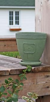 greenflowerpot