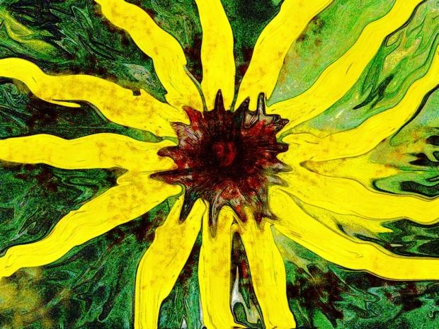 funflowerblog