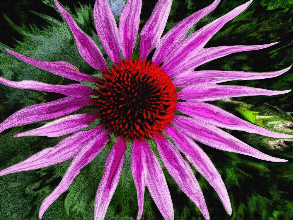 Liquidflowerblog